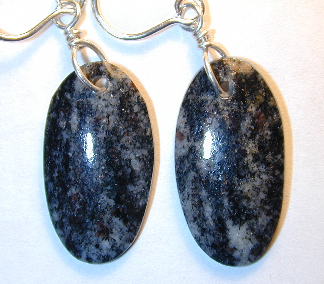 Acasta gneiss dangle earrings